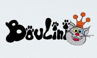 Boulini